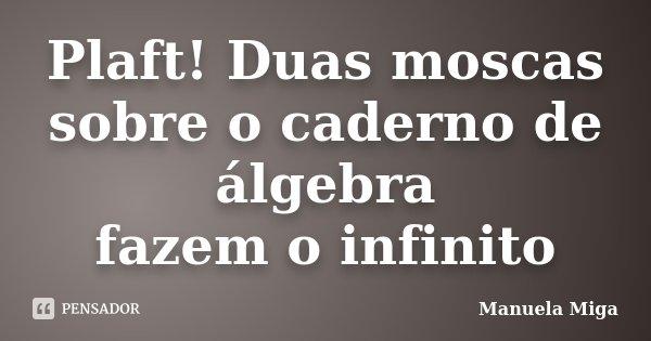 Plaft! Duas moscas sobre o caderno de álgebra fazem o infinito... Frase de Manuela Miga.