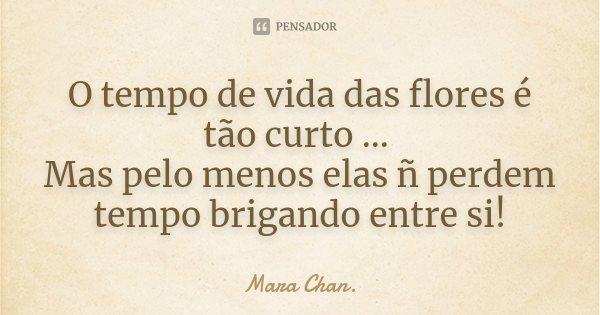 O tempo de vida das flores é tão curto ... Mas pelo menos elas ñ perdem tempo brigando entre si!... Frase de Mara Chan.
