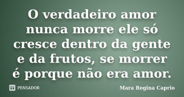 O verdadeiro amor nunca morre ele só cresce dentro da gente e da frutos, se morrer é porque não era amor.... Frase de Mara Regina Caprio.