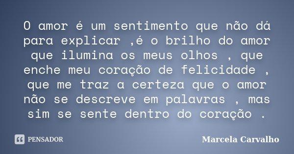 O amor é um sentimento que não dá para explicar ,é o brilho do amor que ilumina os meus olhos , que enche meu coração de felicidade , que me traz a certeza que ... Frase de Marcela Carvalho.