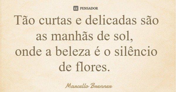 Tão curtas e delicadas são as manhãs de sol, onde a beleza é o silêncio de flores.... Frase de Marcello Brenner.