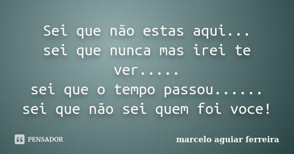 Sei que não estas aqui... sei que nunca mas irei te ver..... sei que o tempo passou...... sei que não sei quem foi voce!... Frase de Marcelo Aguiar Ferreira.