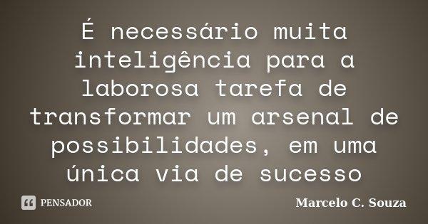 É necessário muita inteligência para a laborosa tarefa de transformar um arsenal de possibilidades, em uma única via de sucesso... Frase de Marcelo C. Souza.