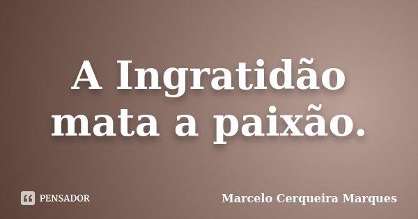 A Ingratidão mata a paixão.... Frase de Marcelo Cerqueira Marques.