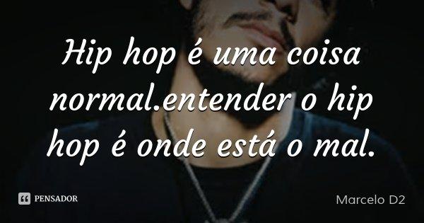 Hip hop é uma coisa normal.entender o hip hop é onde está o mal.... Frase de Marcelo D2.