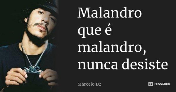 Malandro que é malandro, nunca desiste... Frase de Marcelo D2.