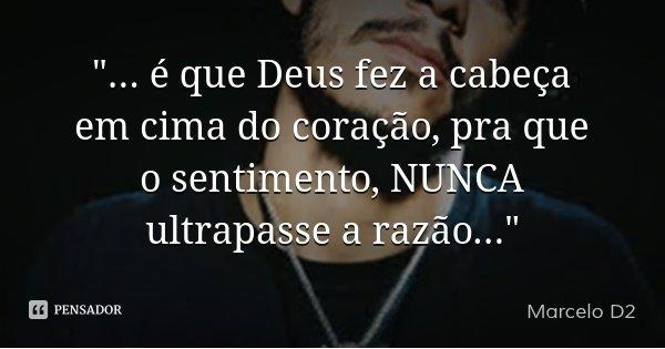 """""""... é que Deus fez a cabeça em cima do coração, pra que o sentimento, NUNCA ultrapasse a razão...""""... Frase de Marcelo D2."""