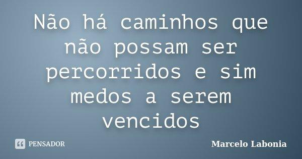 Não há caminhos que não possam ser percorridos e sim medos a serem vencidos... Frase de Marcelo Labonia.