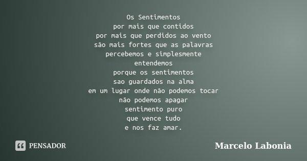 Os Sentimentos por mais que contidos por mais que perdidos ao vento são mais fortes que as palavras percebemos e simplesmente entendemos porque os sentimentos s... Frase de Marcelo Labonia.