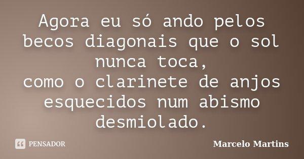 Agora eu só ando pelos becos diagonais que o sol nunca toca, como o clarinete de anjos esquecidos num abismo desmiolado.... Frase de Marcelo Martins.