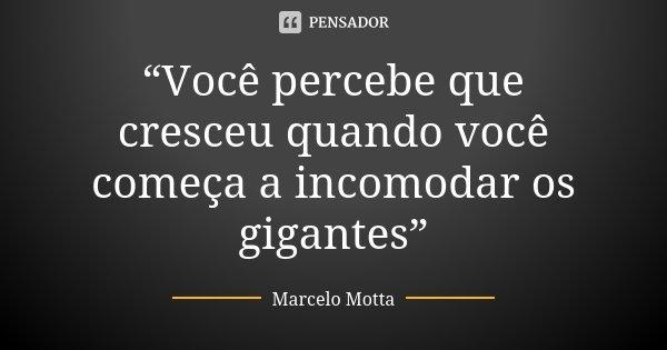 """""""Você percebe que cresceu quando você começa a incomodar os gigantes""""... Frase de Marcelo Motta."""