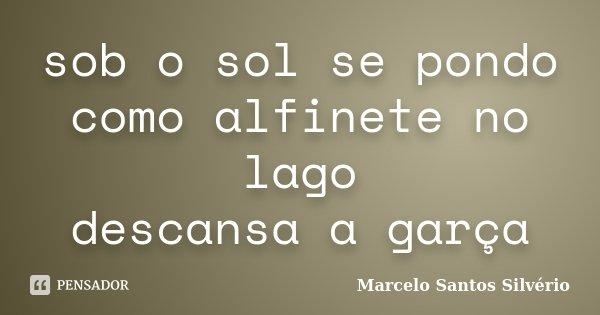 sob o sol se pondo como alfinete no lago descansa a garça... Frase de Marcelo Santos Silvério.