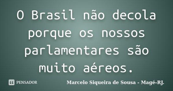 O Brasil não decola porque os nossos parlamentares são muito aéreos.... Frase de Marcelo Siqueira de Sousa - Magé-RJ..
