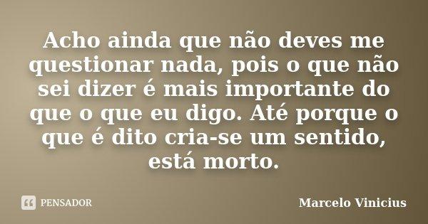 Acho ainda que não deves me questionar nada, pois o que não sei dizer é mais importante do que o que eu digo. Até porque o que é dito cria-se um sentido, está m... Frase de Marcelo Vinicius.