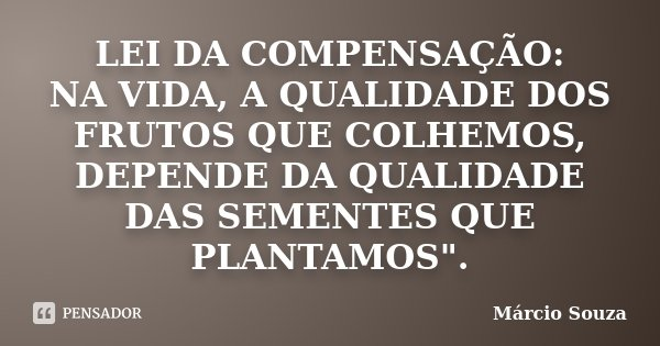 """LEI DA COMPENSAÇÃO: NA VIDA, A QUALIDADE DOS FRUTOS QUE COLHEMOS, DEPENDE DA QUALIDADE DAS SEMENTES QUE PLANTAMOS"""".... Frase de Márcio Souza."""