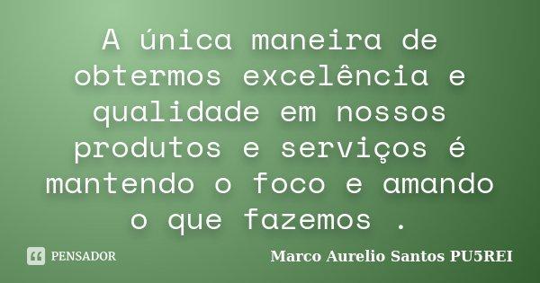 A única maneira de obtermos excelência e qualidade em nossos produtos e serviços é mantendo o foco e amando o que fazemos .... Frase de Marco Aurelio Santos PU5REI.