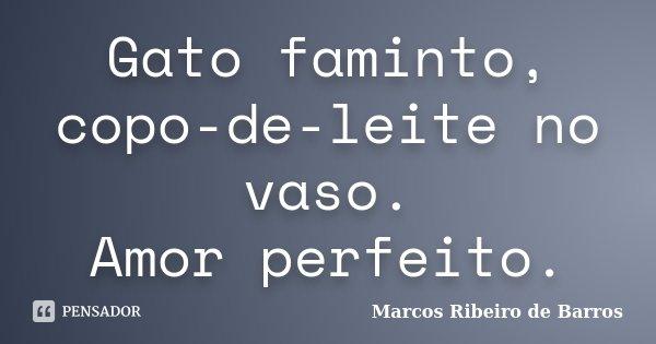 Gato faminto, copo-de-leite no vaso. Amor perfeito.... Frase de Marcos Ribeiro de Barros.