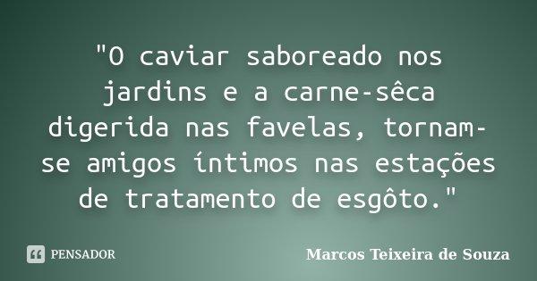 """""""O caviar saboreado nos jardins e a carne-sêca digerida nas favelas, tornam-se amigos íntimos nas estações de tratamento de esgôto.""""... Frase de Marcos Teixeira de Souza."""