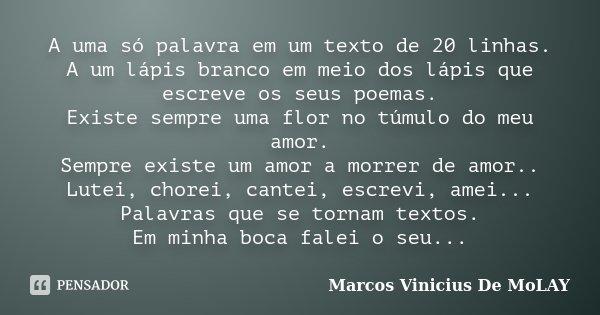 A uma só palavra em um texto de 20 linhas. A um lápis branco em meio dos lápis que escreve os seus poemas. Existe sempre uma flor no túmulo do meu amor. Sempre ... Frase de Marcos Vinicius De MoLay.