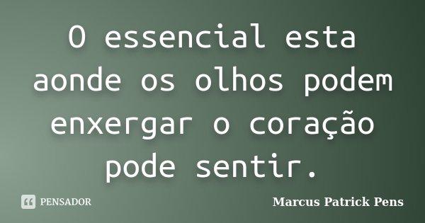 O essencial esta aonde os olhos podem enxergar o coração pode sentir.... Frase de Marcus Patrick Pens.