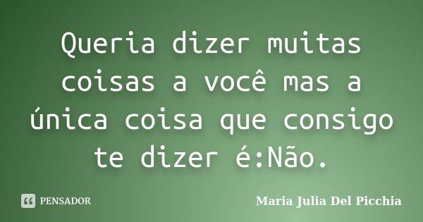 Queria dizer muitas coisas a você mas a única coisa que consigo te dizer é:Não.... Frase de Maria Julia Del Picchia.