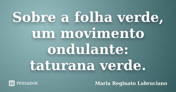 Sobre a folha verde, um movimento ondulante: taturana verde.... Frase de Maria Reginato Labruciano.