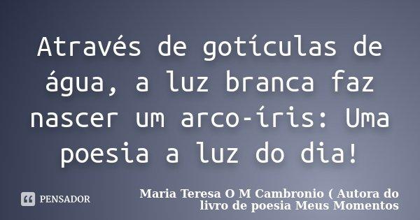 Através de gotículas de água, a luz branca faz nascer um arco-íris: Uma poesia a luz do dia!... Frase de Maria Teresa O M Cambronio ( Autora do livro de poesia Meus Momentos.
