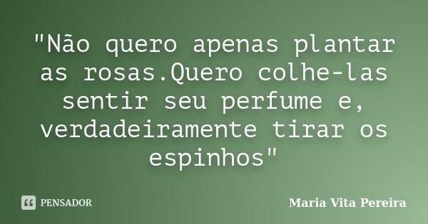 """""""Não quero apenas plantar as rosas.Quero colhe-las sentir seu perfume e, verdadeiramente tirar os espinhos""""... Frase de Maria Vita Pereira."""