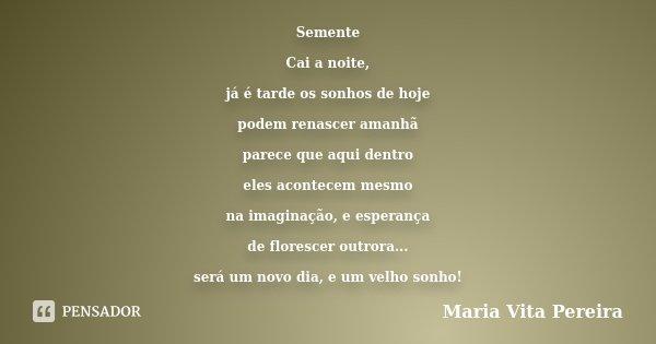 Semente Cai a noite, já é tarde os sonhos de hoje podem renascer amanhã parece que aqui dentro eles acontecem mesmo na imaginação, e esperança de florescer outr... Frase de Maria Vita Pereira.
