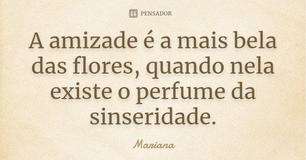 A amizade é a mais bela das flores, quando nela existe o perfume da sinseridade.... Frase de Mariana..