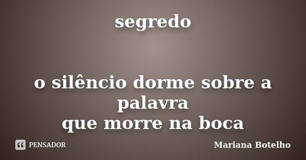 segredo o silêncio dorme sobre a palavra que morre na boca... Frase de Mariana Botelho.