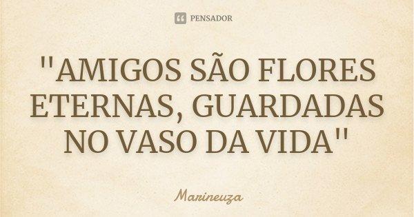 """AMIGOS SÃO FLORES ETERNAS, GUARDADAS NO VASO DA VIDA""... Frase de Marineuza."