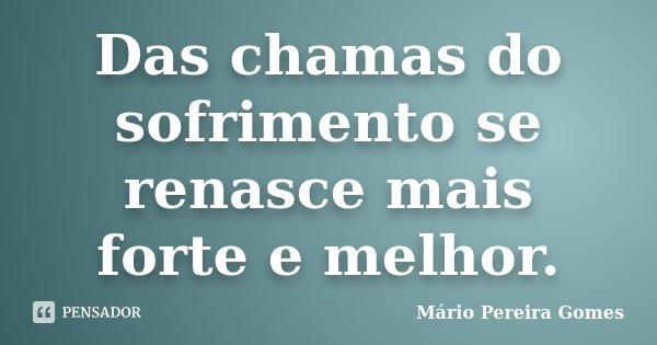 Das chamas do sofrimento se renasce mais forte e melhor.... Frase de Mário Pereira Gomes.