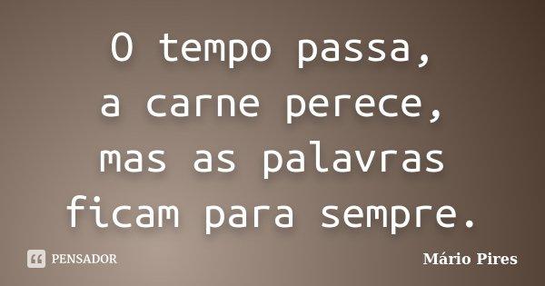 O tempo passa, a carne perece, mas as palavras ficam para sempre.... Frase de Mário Pires.