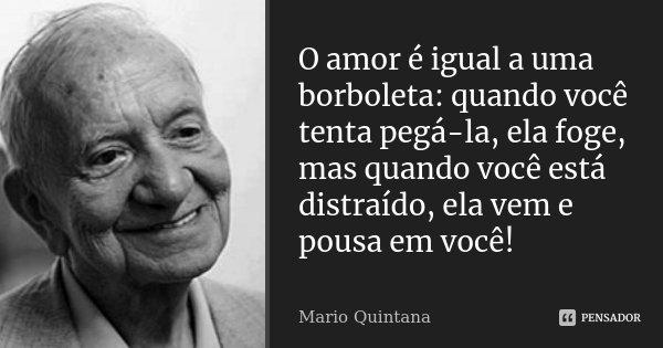 O amor é igual a uma borboleta: quando você tenta pegá-la, ela foge, mas quando você está distraído, ela vem e pousa em você!... Frase de Mário Quintana.