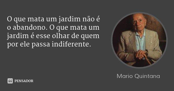 O que mata um jardim não é o abandono. O que mata um jardim é esse olhar de quem por ele passa indiferente.... Frase de Mario Quintana.