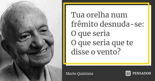 Tua orelha num frêmito desnuda-se: O que seria O que seria que te disse o vento?... Frase de Mario Quintana.