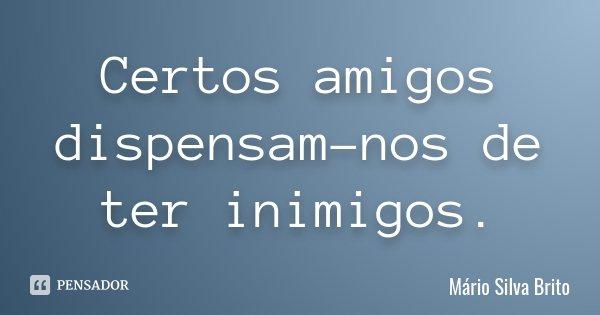 Certos amigos dispensam-nos de ter inimigos.... Frase de Mário Silva Brito.
