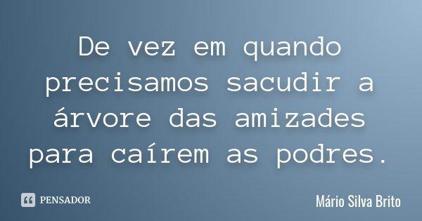 De vez em quando precisamos sacudir a árvore das amizades para caírem as podres.... Frase de Mário Silva Brito.