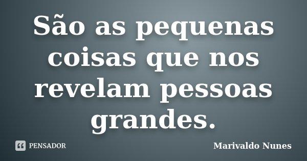São as pequenas coisas que nos revelam pessoas grandes.... Frase de Marivaldo Nunes.