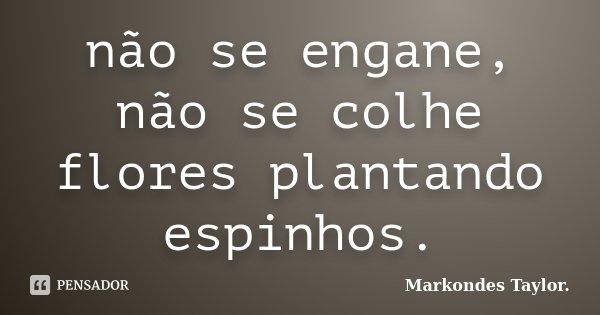 não se engane, não se colhe flores plantando espinhos.... Frase de markondes taylor..
