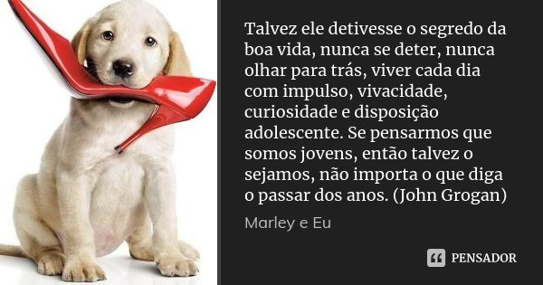 Talvez ele detivesse o segredo da boa vida, nunca se deter, nunca olhar para trás, viver cada dia com impulso, vivacidade, curiosidade e disposição adolescente.... Frase de Marley e Eu.