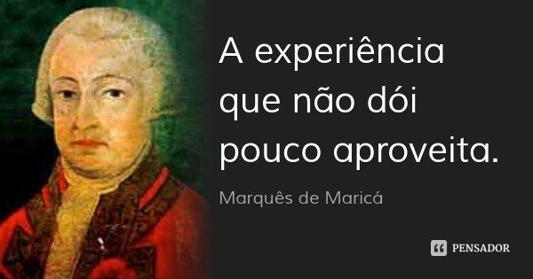 A experiência que não dói pouco aproveita.... Frase de Marquês de Maricá.