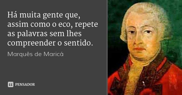 Há muita gente que, assim como o eco, repete as palavras sem lhes compreender o sentido.... Frase de Marquês de Maricá.
