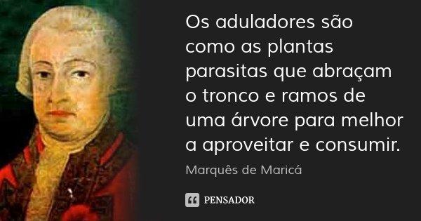 Os aduladores são como as plantas parasitas que abraçam o tronco e ramos de uma árvore para melhor a aproveitar e consumir.... Frase de Marquês de Maricá.