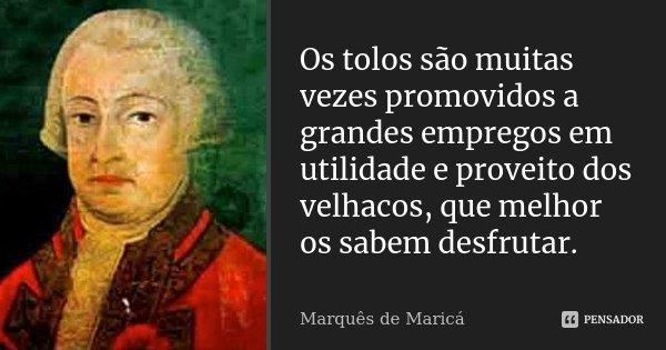 Os tolos são muitas vezes promovidos a grandes empregos em utilidade e proveito dos velhacos, que melhor os sabem desfrutar.... Frase de Marquês de Maricá.