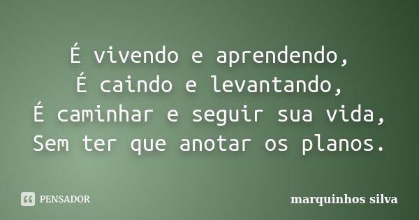 Frases Tou Vivendo: É Vivendo E Aprendendo, É Caindo E... Marquinhos Silva