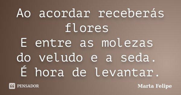 Ao acordar receberás flores E entre as molezas do veludo e a seda. É hora de levantar.... Frase de Marta Felipe.