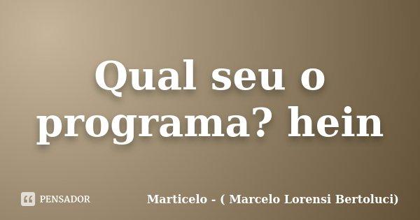 Qual seu o programa? hein... Frase de Marticelo - ( Marcelo Lorensi Bertoluci).