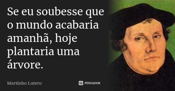 Se eu soubesse que o mundo acabaria amanhã, hoje plantaria uma árvore.... Frase de Martinho Lutero.